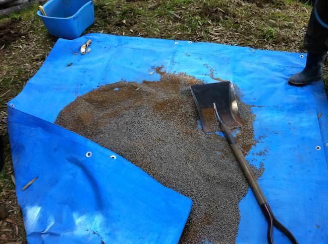 タケノコの肥料を混ぜる
