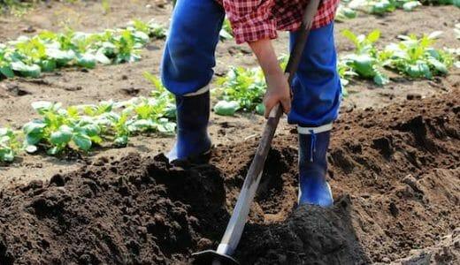 さまざまな農法の特徴と違い