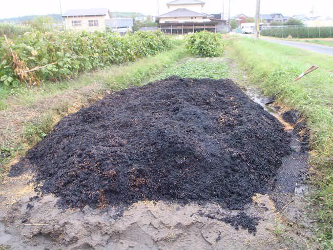 真っ黒で完成 - もみ殻くん炭作り