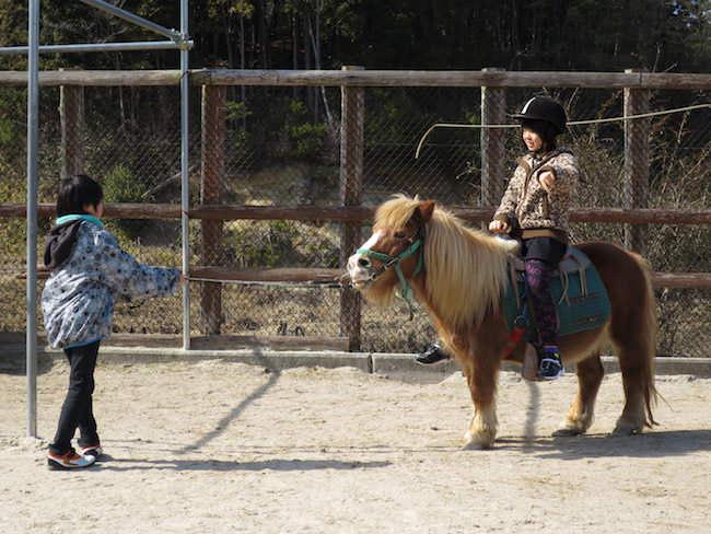 ポニーに乗馬 - もくもくファーム