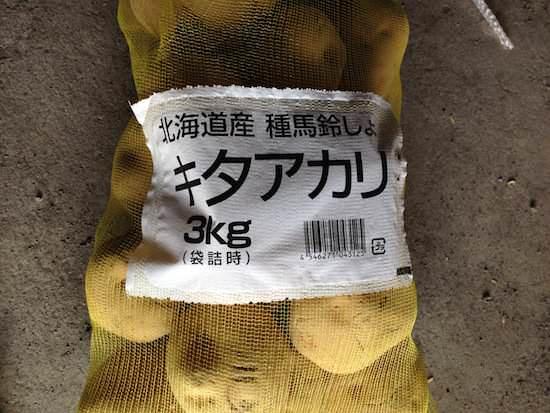 キタアカリの種芋