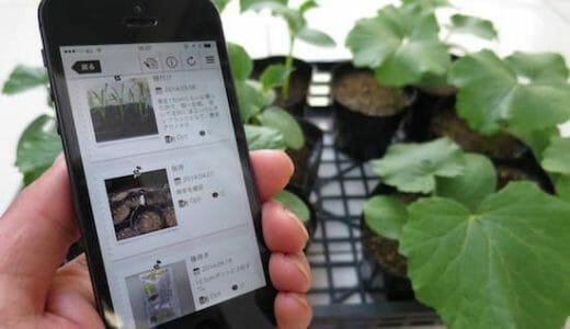 プチ栽培記録にも使える家庭菜園SNS3選