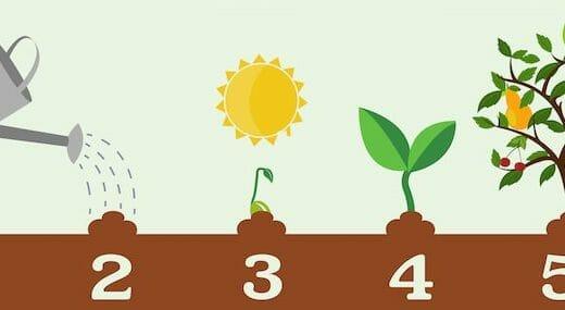 野菜の栽培方法の勉強・参考にしたいオススメ書籍