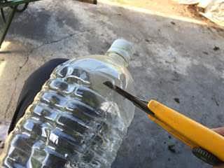 ペットボトルでネキリムシ対策