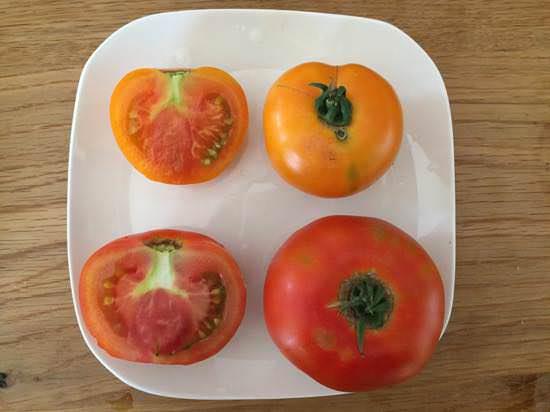 ぜいたくトマトと、ぜいたくトマト ゴールド