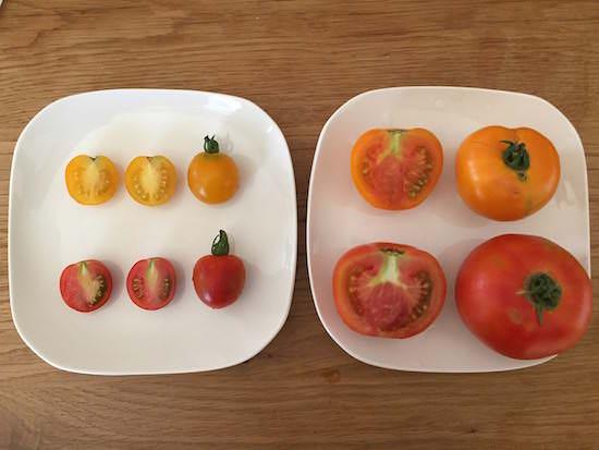 ベルモンテのトマト食べ比べ