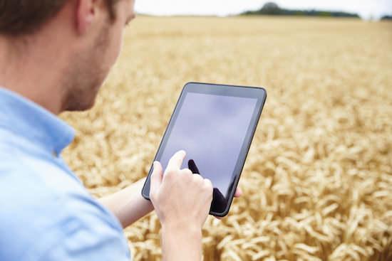 農業現場でタブレット操作