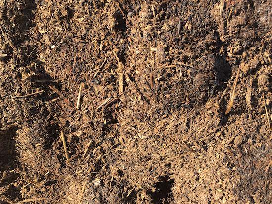 牛ふん堆肥