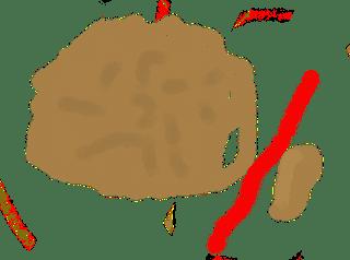 ゴーヤの種に傷をつける