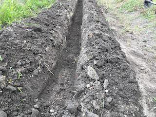 溝肥に土を被せる