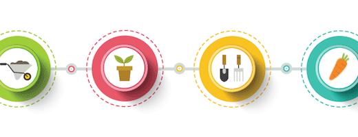 野菜栽培の一連の流れと各作業内容について