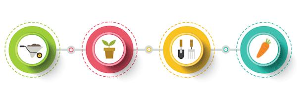 野菜栽培の一連の流れ