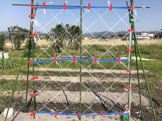 きゅうりネットの張り方(固定部分)