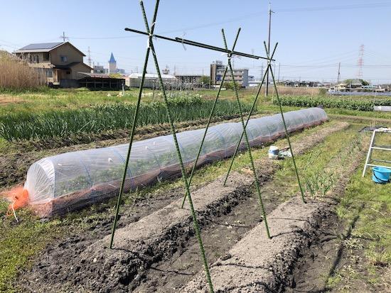 園芸ネットを張るための支柱立て