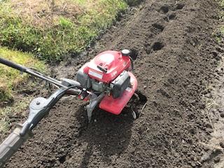 耕運機で耕して土作り作業