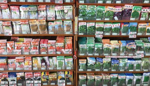 種苗の種類と選び方