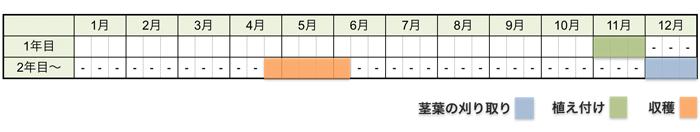 アスパラガスの栽培時期・栽培スケジュール(大苗から育てる場合)