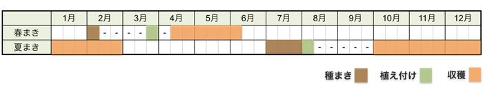 ブロッコリーの栽培時期・栽培スケジュール