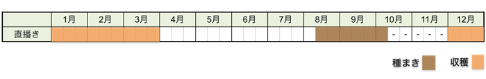 ミブナ(壬生菜)の栽培時期・栽培スケジュール