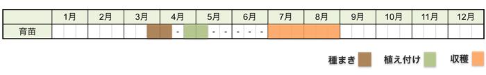 カボチャの栽培時期・栽培スケジュール