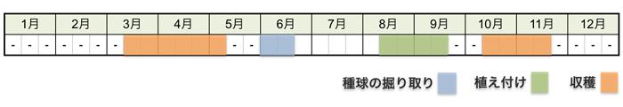 アサツキ(浅葱)・ワケギ(分葱)の栽培時期・栽培スケジュール