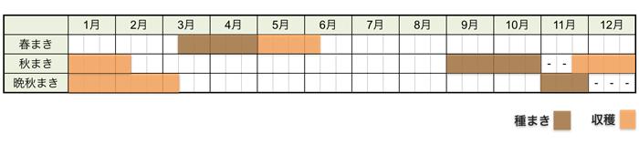 ホウレンソウの栽培時期・栽培スケジュール
