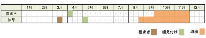サトイモ(里芋)の栽培時期・栽培スケジュール
