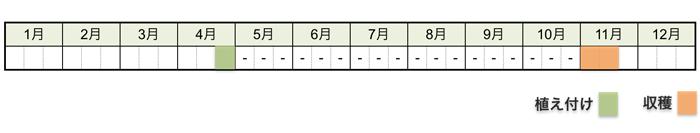 ヤマイモ(山芋・長芋)の栽培時期・栽培スケジュール