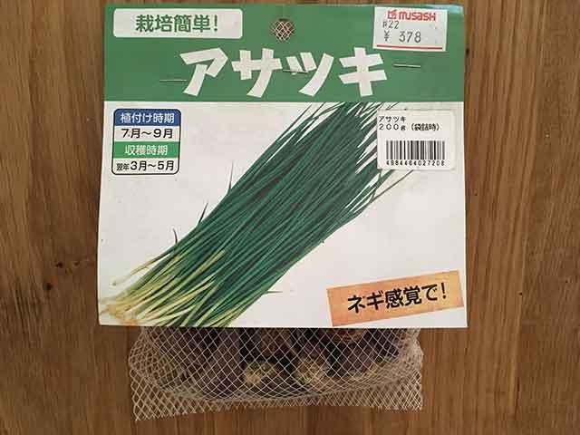 アサツキ(浅葱)の種球