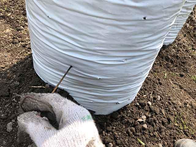 栽培袋に水抜き穴をあける