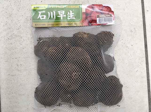 里芋の種芋(石川早生)