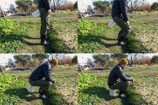 お尻に椅子を固定して農作業する様子