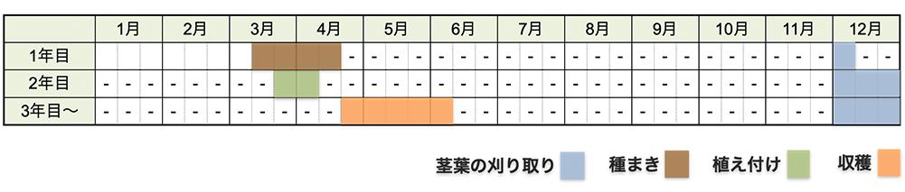 アスパラガスの栽培時期・栽培スケジュール(種から育てる場合)