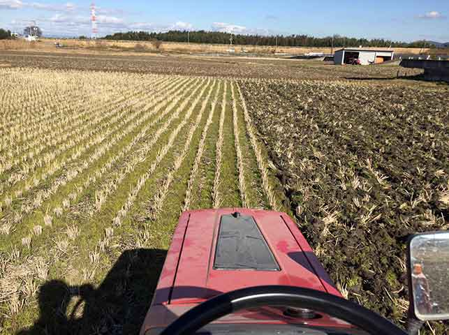 トラクターで田んぼを耕転