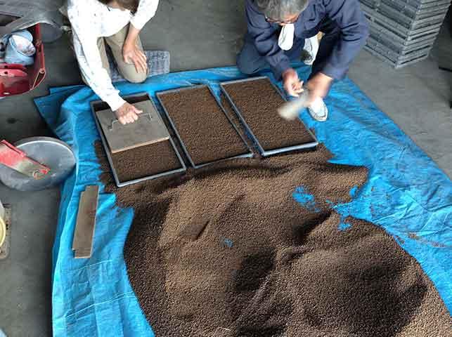 水稲の育苗箱に床土を敷き詰める