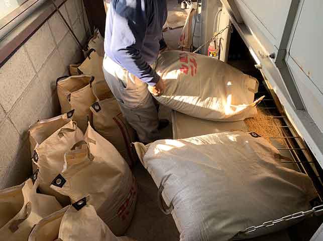 収穫した籾を乾燥機に投入