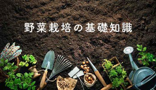 野菜栽培の基礎知識