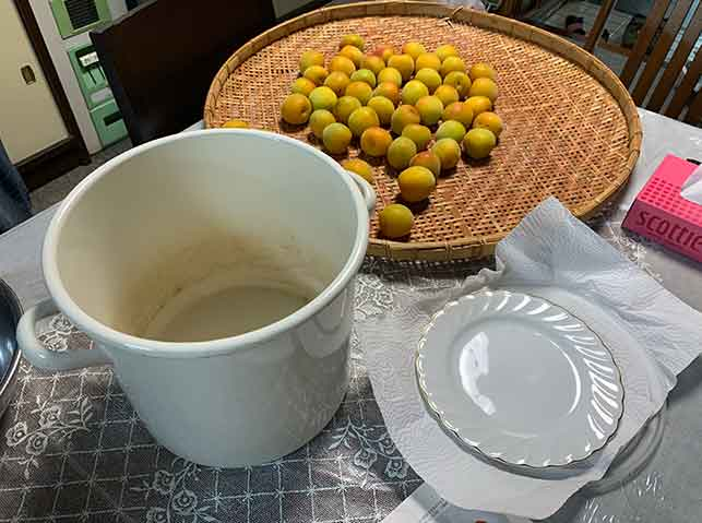 梅干し作りの道具・材料