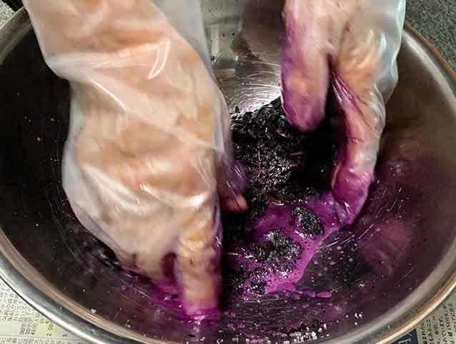 赤紫蘇からアクの汁が出る