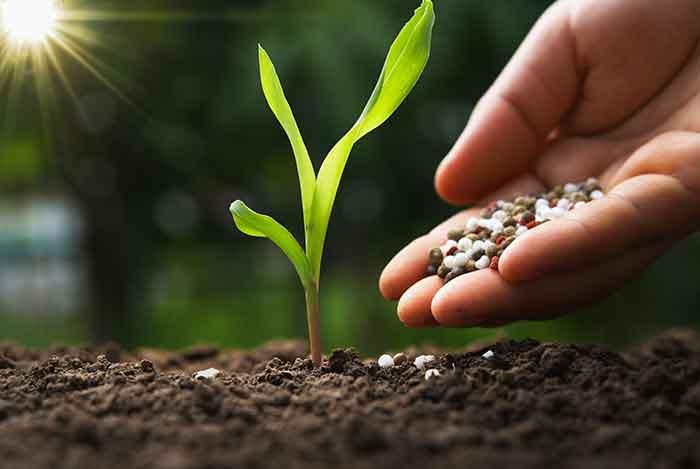 化学肥料・化成肥料