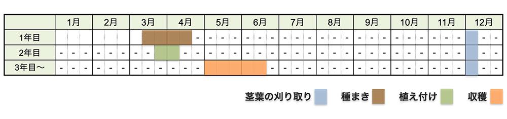 アスパラガスの栽培時期・栽培スケジュール