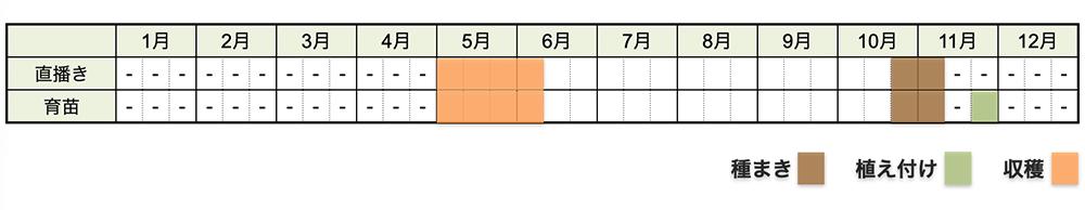 エンドウ(えんどう豆)の栽培時期・栽培スケジュール