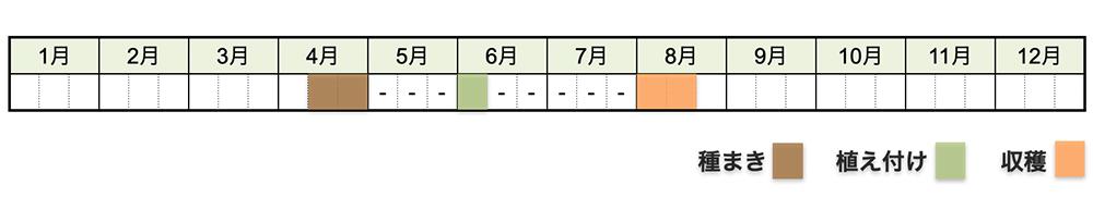 マクワウリの栽培時期・栽培スケジュール