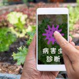 写真から病害虫診断ができるスマホアプリ