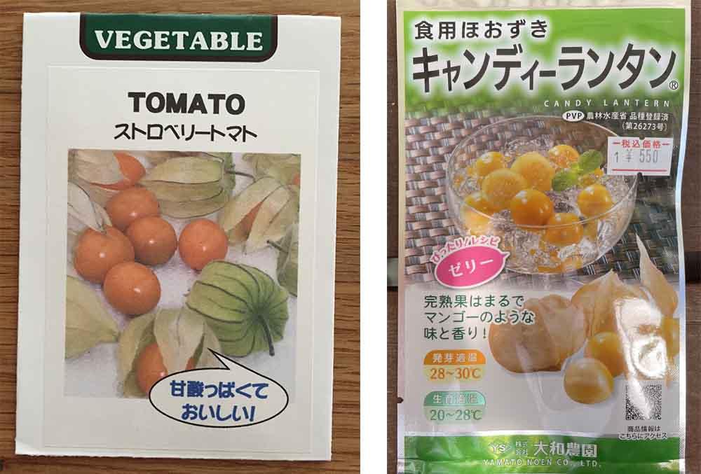 食用ほおずき(ストロベリートマト、キャンディランタン)の種